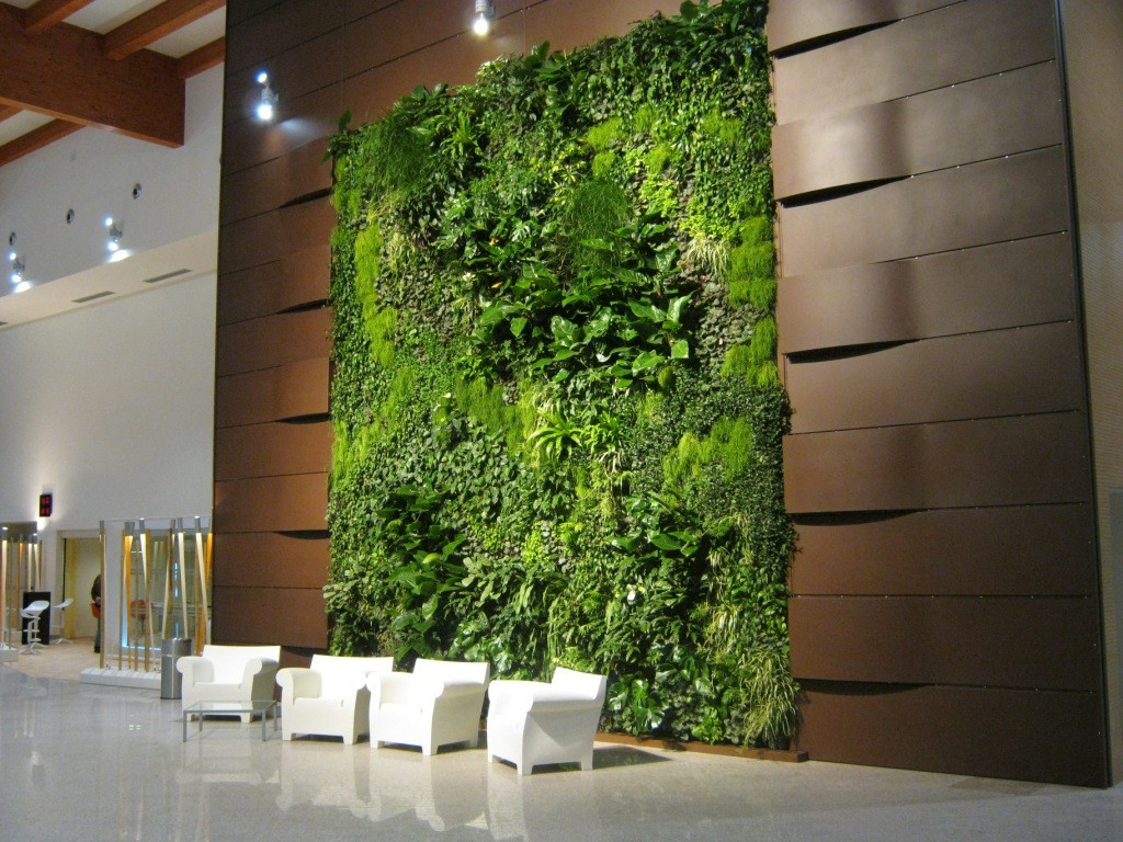 interior_plants_3