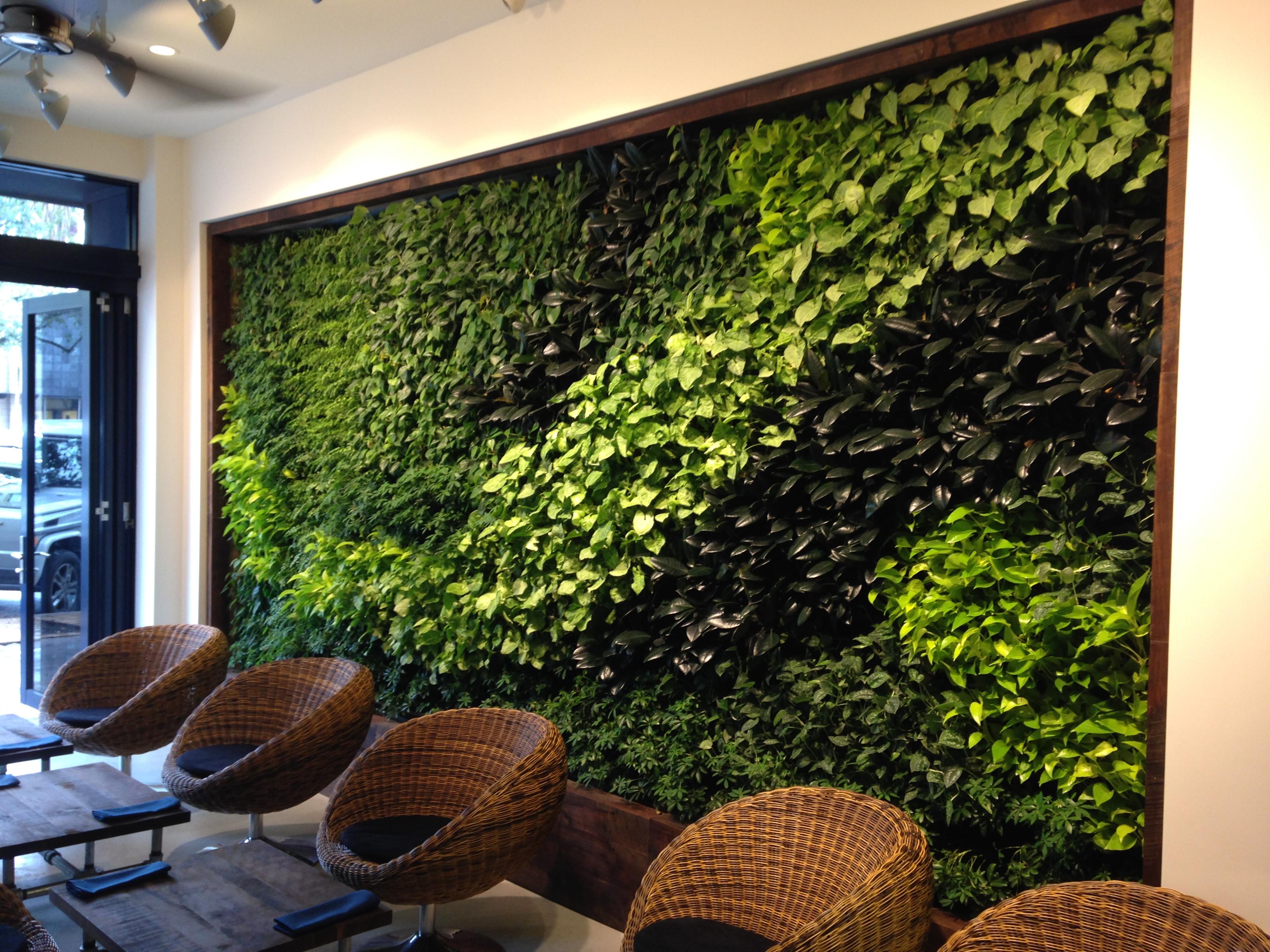 Interior Plant Design Plant Professionals Miami Landscaping