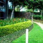 Commercial-Landscaping-Maintenance