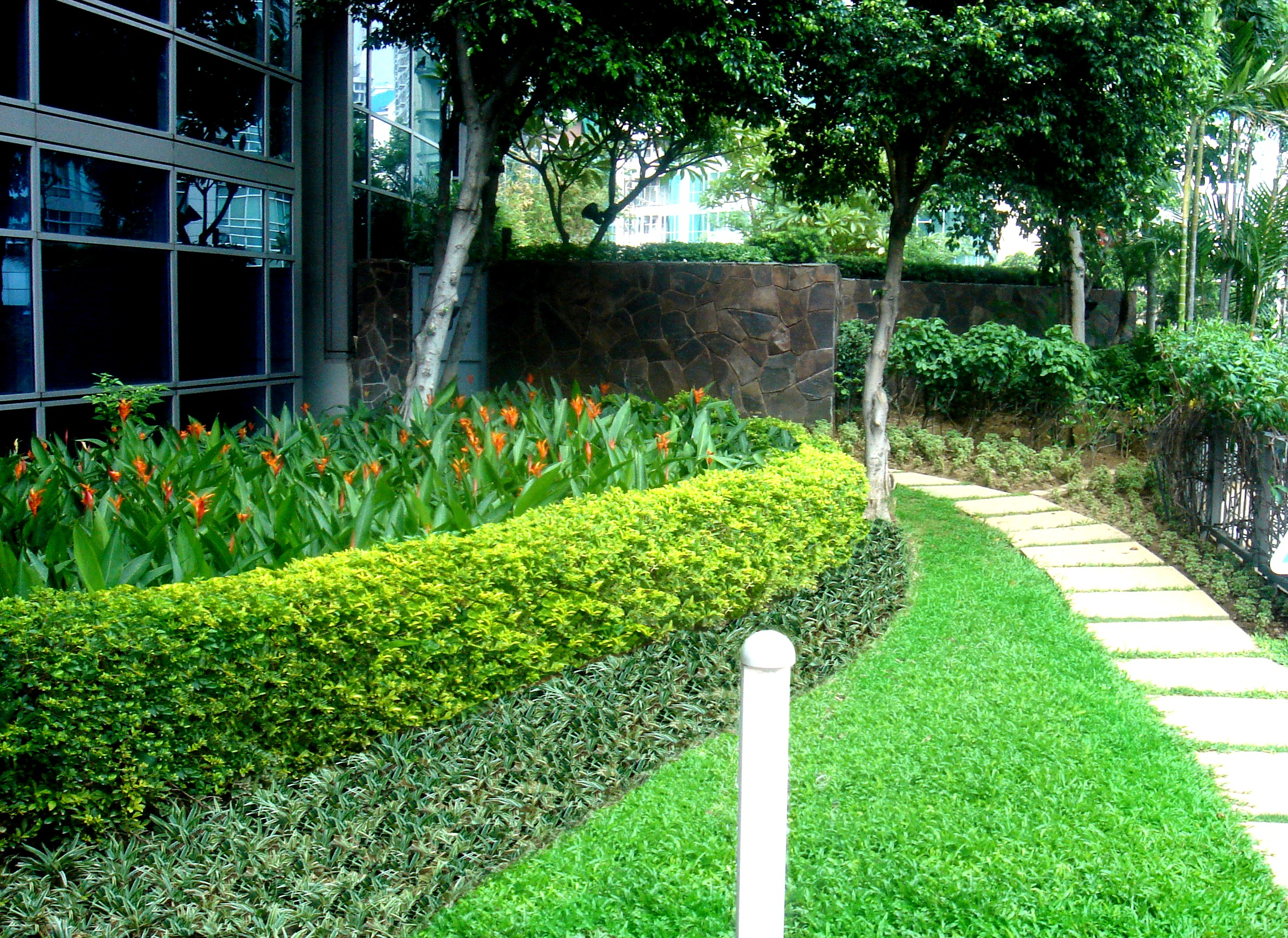 Commercial Landscaping Ideas Near Miami Fl Plant