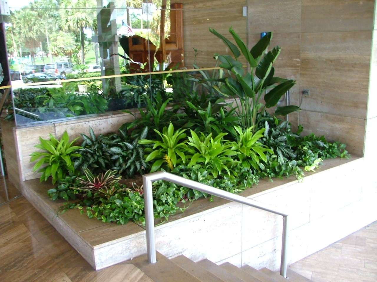 Our Indoor Plant Concepts Amp Designs Plant Professionals