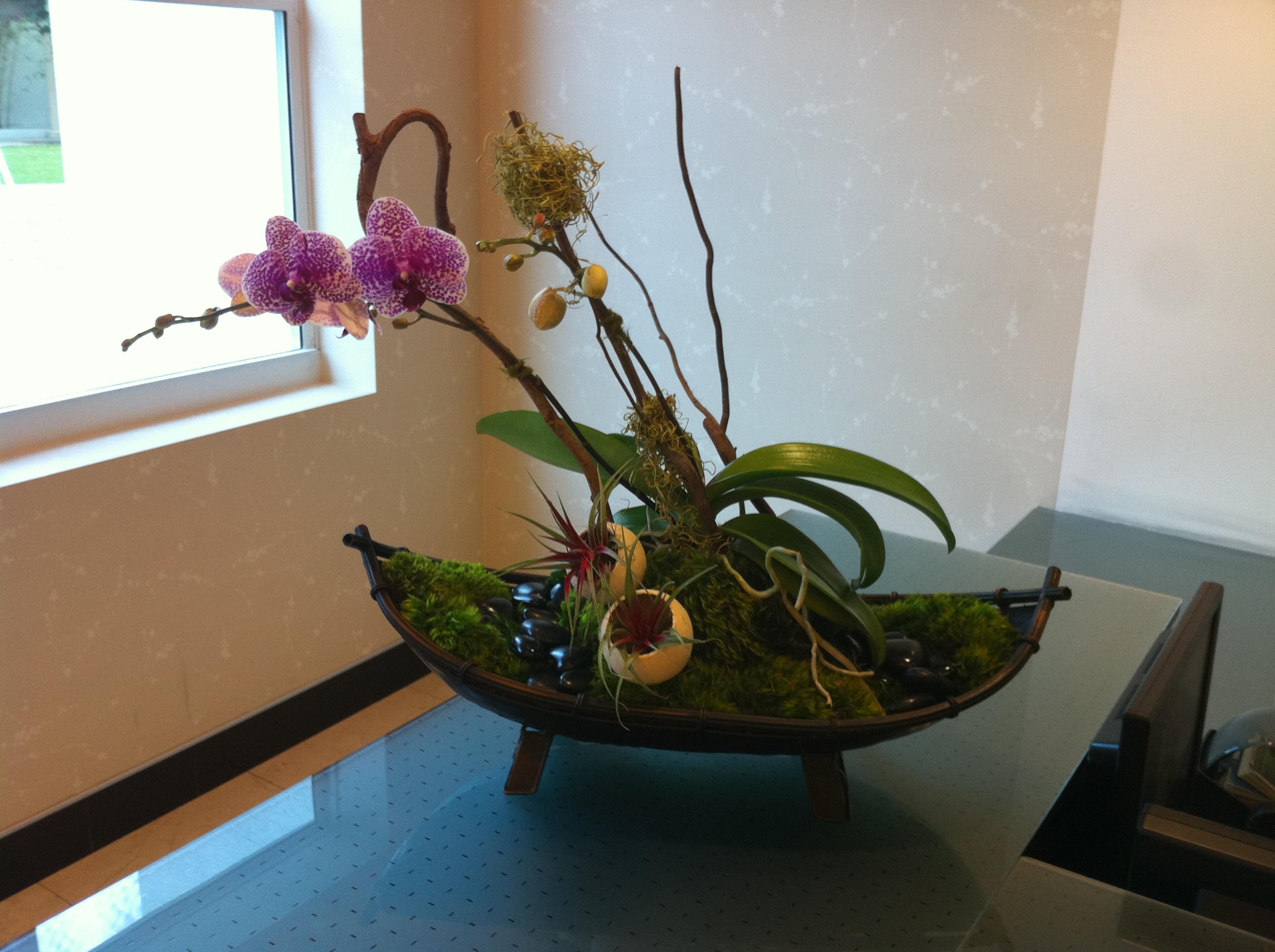 Interior plant design photos plant professionals miami fl for Interior plant designs