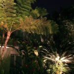 Landscape-Lighting-increases-the-value-of-your-Tampa-Bay-home