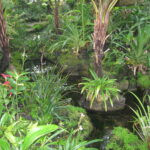 atlanta-botanical-garden-20141107073136-545c75585b582