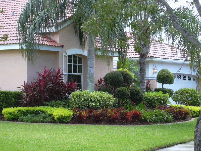 front-yard-landscaping-bushes