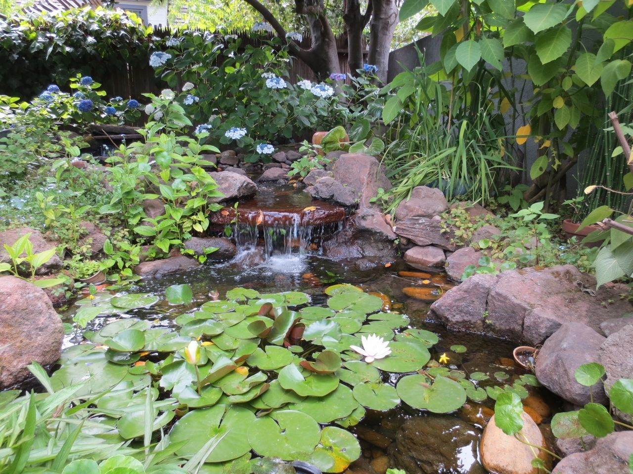 garden-water-fountain-20141107123433-545cbc592e833