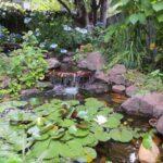 garden-water-fountain-20141107123433-545cbc592e833