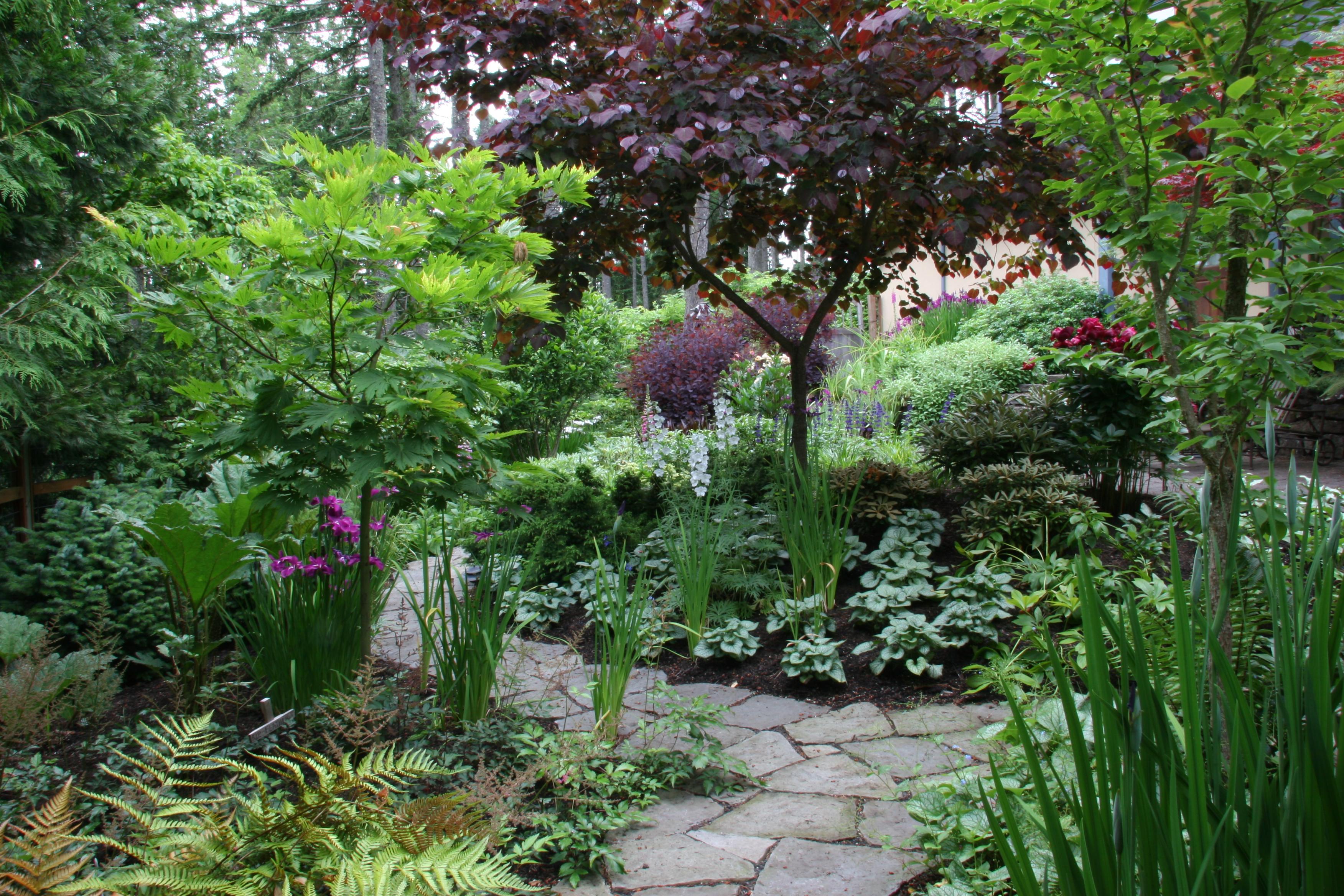 Landscape Design Services Near Miami, FL | Plant Professionals on Landscape Garden Designs For Small Gardens id=25906