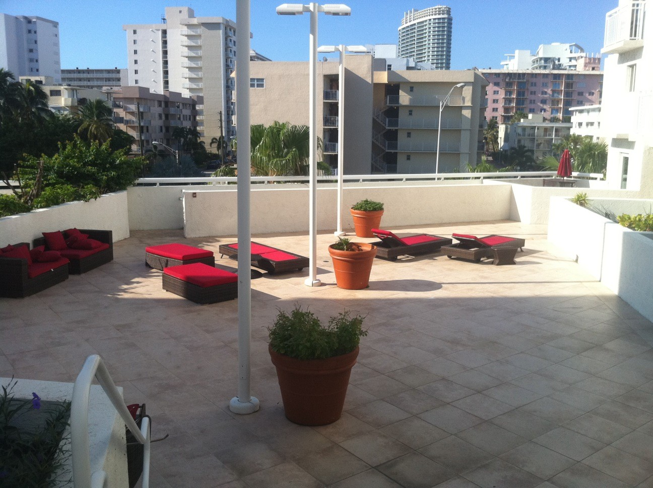 Plant Professionals rooftop patio spaces