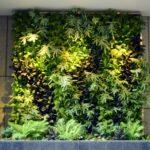 vertical-wall-garden-20141107013100-545c20d40b537