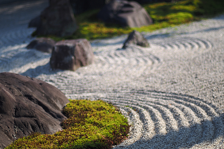 Plant Professionals Miami – Japanese Landscape Design