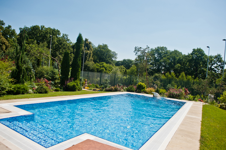 Plant Professionals – Pool Landscaping Ideas