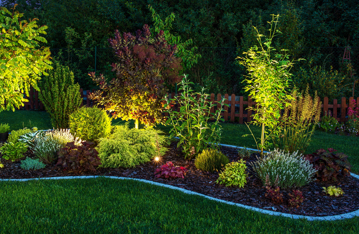 Modernize Your Landscape - Garden Lighting