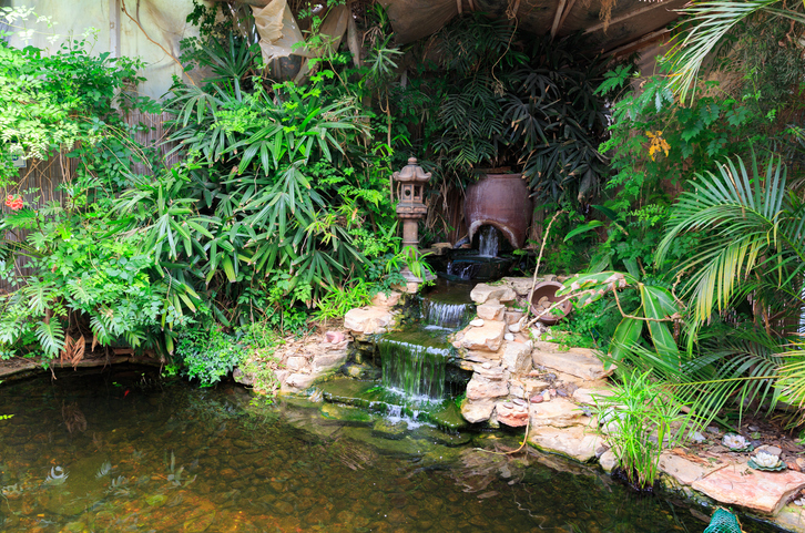 Modernize Your Landscape - Backyard Waterfall
