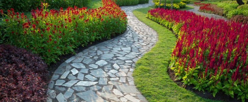 Pathway Walkway Ideas For Front Yards Plant Professionals