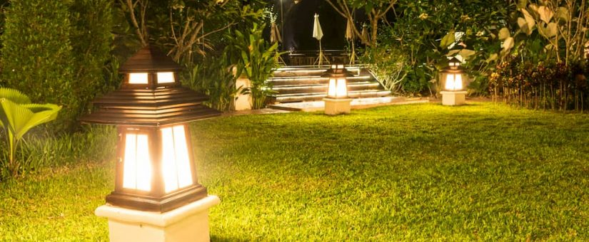 Landscape Lighting Ideas To Accentuate Your Property Plant Professionals
